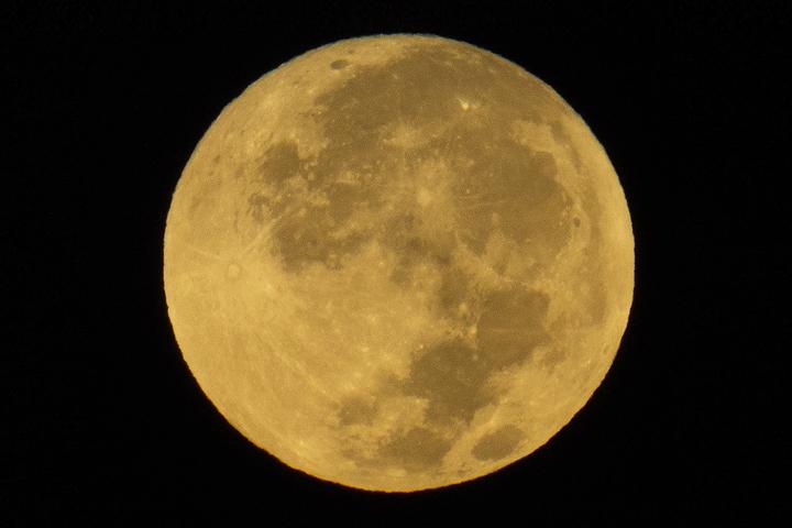 Sucker Moon